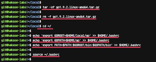 Install Go programming language