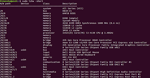 How to have device tree output showing hardware paths