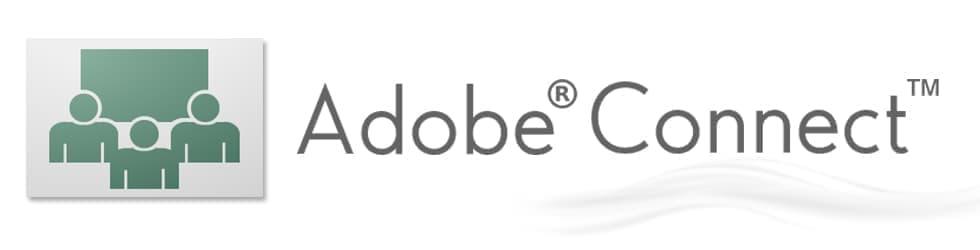 Adobe Connect 9.x New License