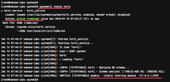Turtl service status