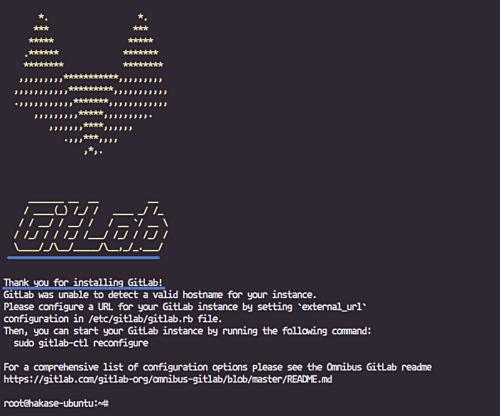Gitlab CE installation routine starts