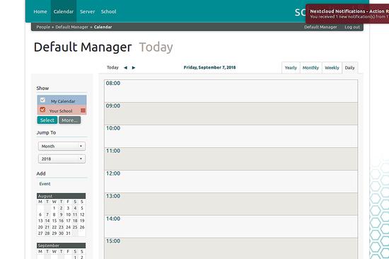 Default manager