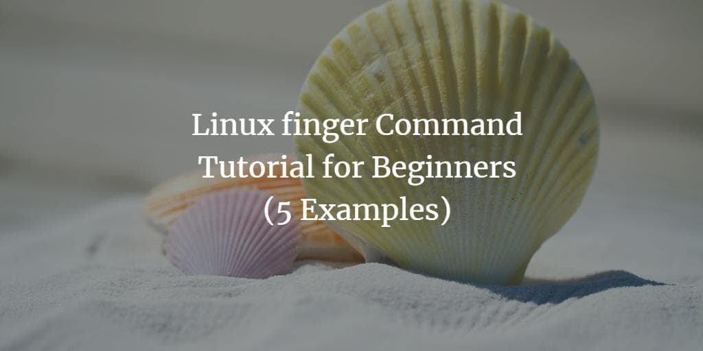 Linux finger Command Tutorial for Beginners (5 Examples)