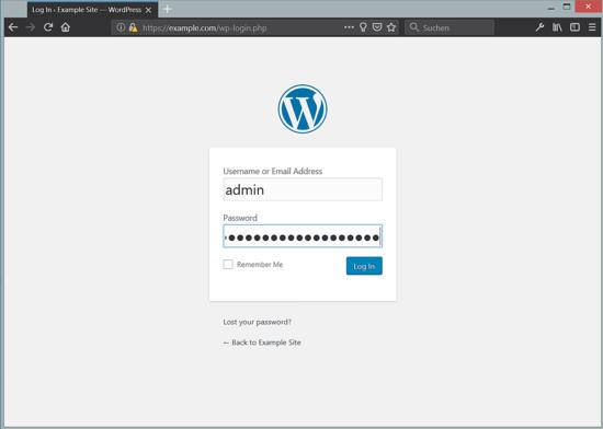 WordPress admin login